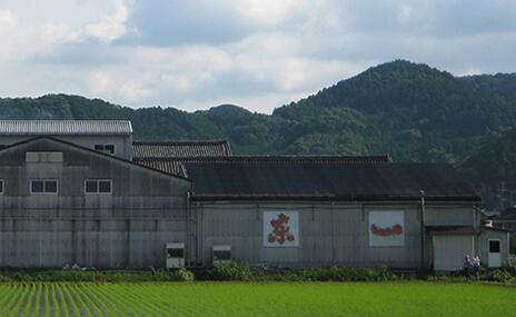東一(五町田酒造) 佐賀県