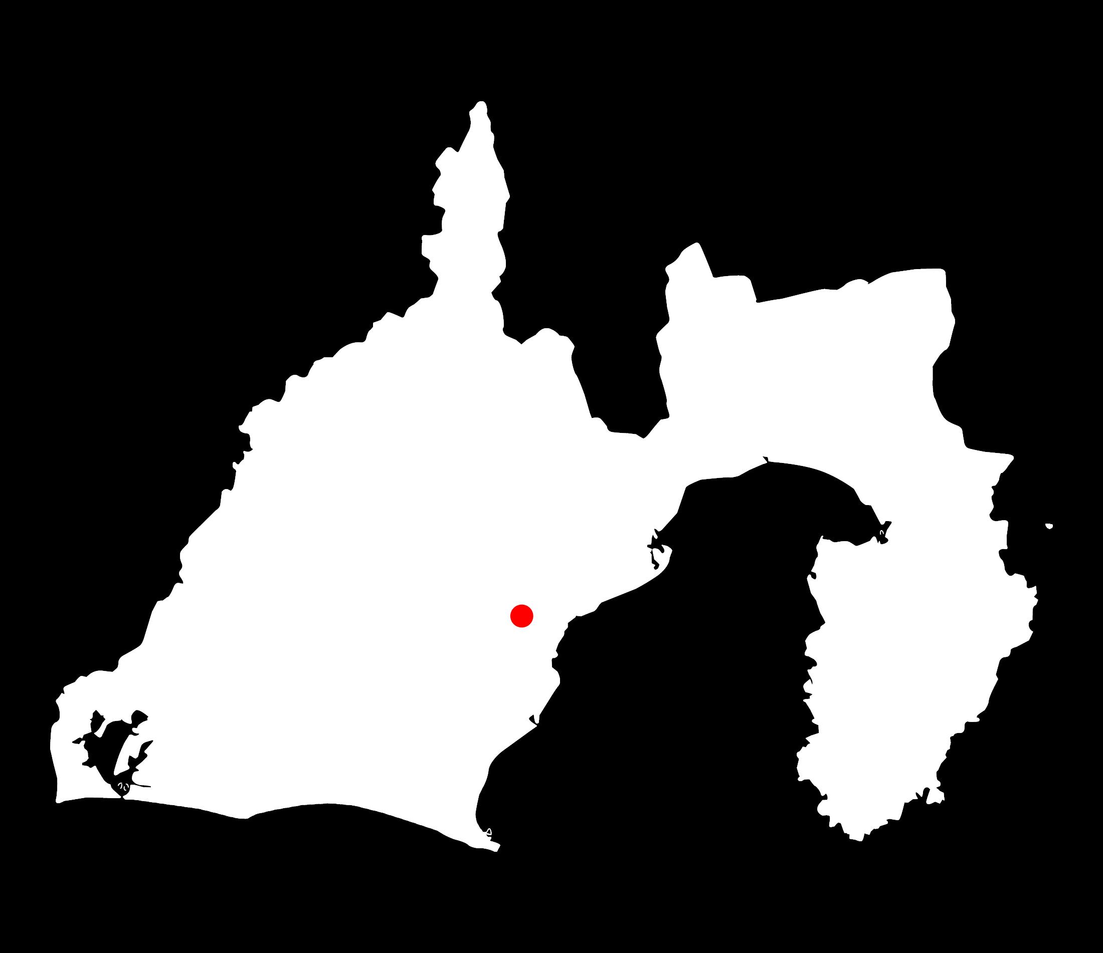 初亀(初亀醸造)静岡県